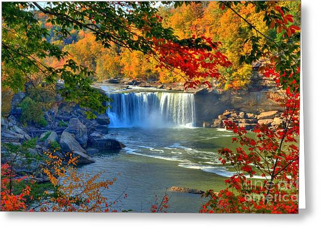 Golds Reds And Greens Greeting Cards - Cumberland Falls In Autumn 2 Greeting Card by Mel Steinhauer