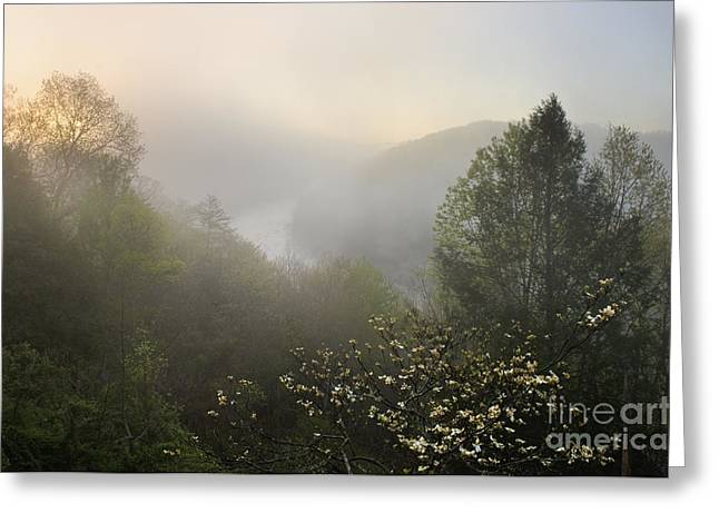 Southern Boone County Greeting Cards - Cumberland River Dawn - D008596 Greeting Card by Daniel Dempster