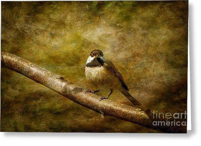 Birds On A Branch Greeting Cards - Curiosity Greeting Card by Lois Bryan