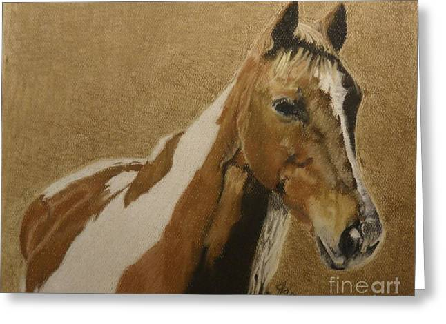 Paint Pastels Greeting Cards - Curious Ketch Greeting Card by Jane Hazell