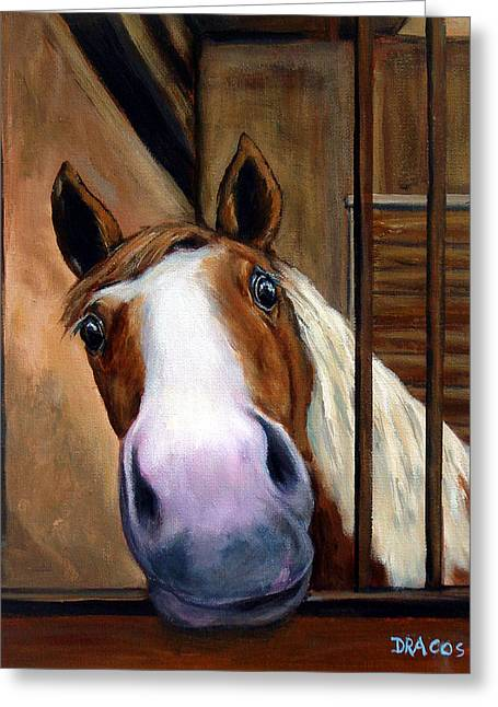 Draco Greeting Cards - Curious Paint Horse Greeting Card by Dottie Dracos
