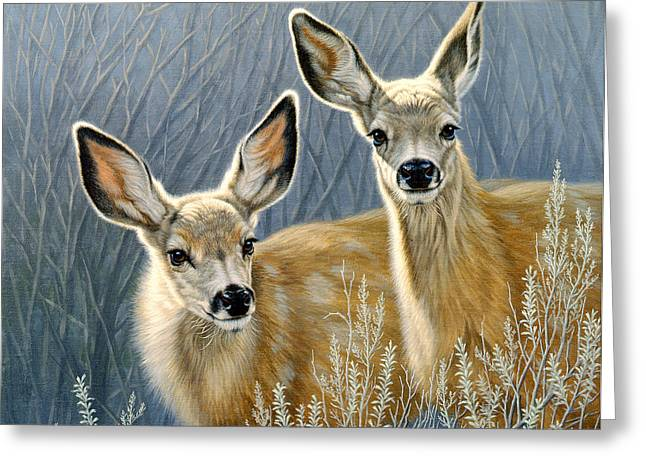 Fawn Greeting Cards - Curious Pair Greeting Card by Paul Krapf