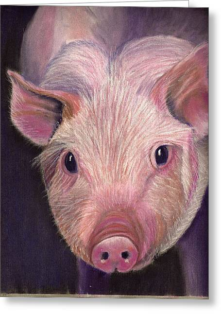Pigs Pastels Greeting Cards - Curious Pig  Greeting Card by Jay Johnston