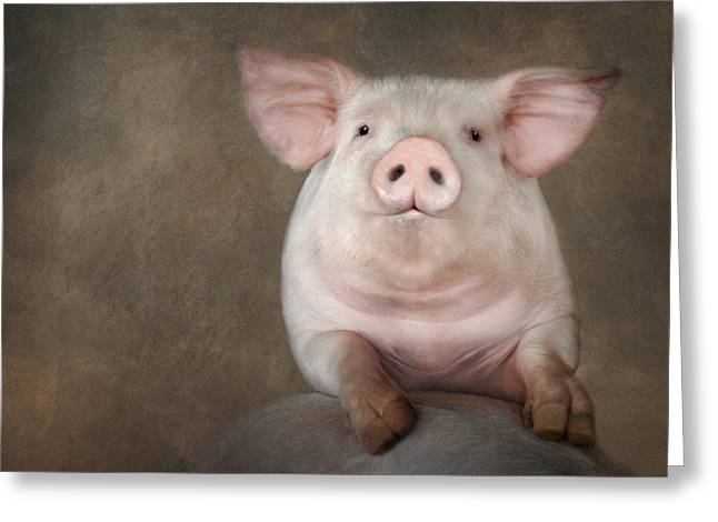 Pig Digital Greeting Cards - Curious Pig Greeting Card by Lori Deiter