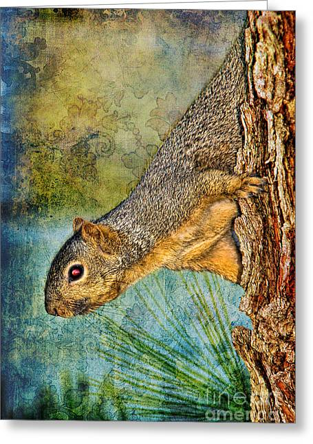 Scavenge Greeting Cards - Curious Squirrel Greeting Card by Mariola Bitner