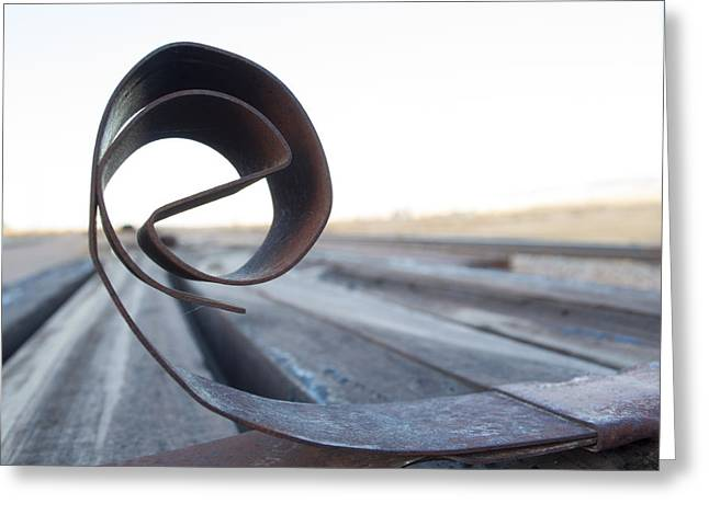 Curled Steel Greeting Card by Fran Riley