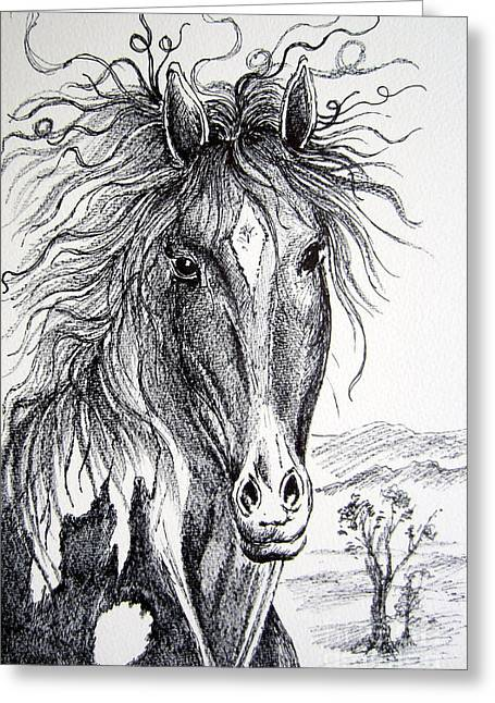 Wild Life Drawings Greeting Cards - Curly beauty Greeting Card by Roberto Gagliardi