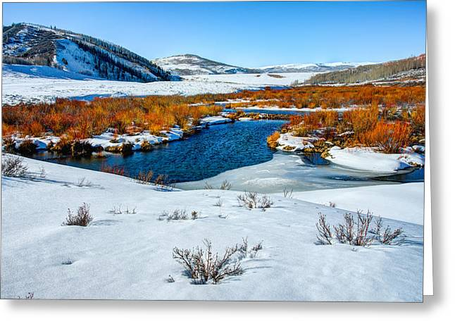 Beautiful Creek Photographs Greeting Cards - Currant Creek on Ice Greeting Card by Chad Dutson