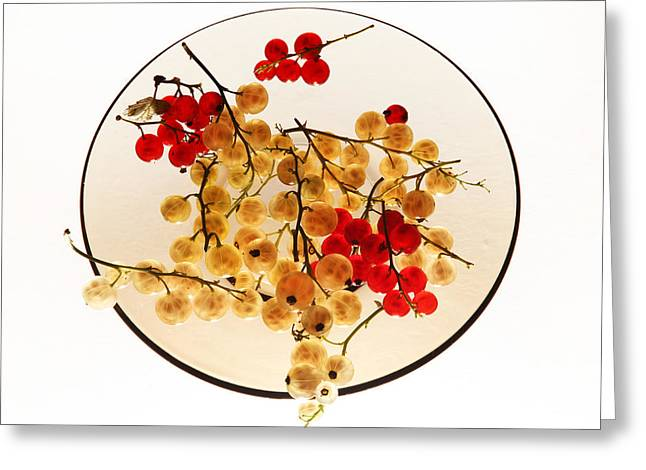 Berry Greeting Cards - Currants on a plate Greeting Card by Vitaliy Gladkiy