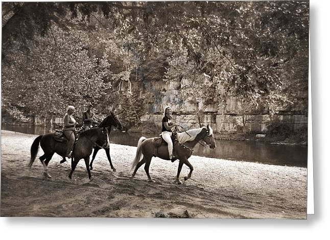 Current River Horses Greeting Card by Marty Koch