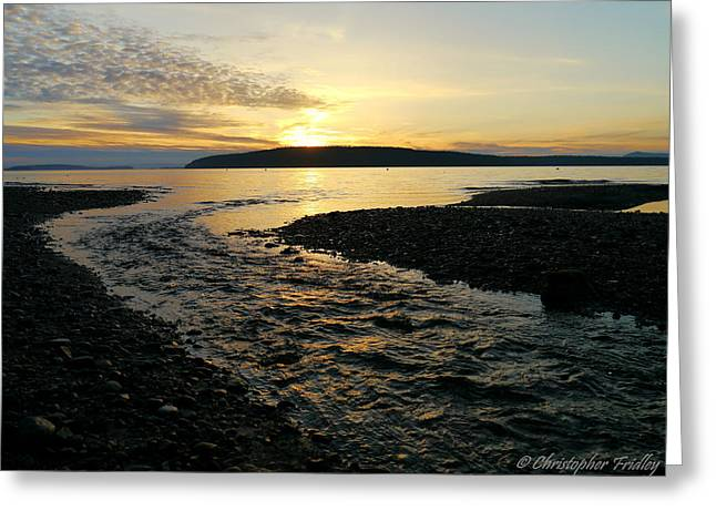 Tidal Creek Scene Greeting Cards - Currently West Greeting Card by Christopher Fridley