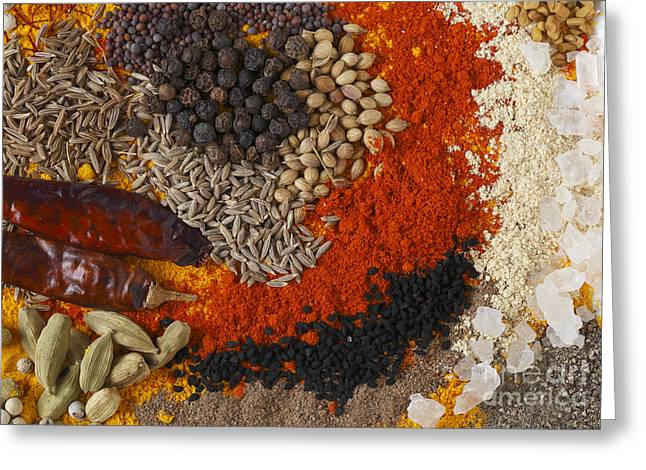 From Seed Greeting Cards - Curry spices rectangular Greeting Card by Paul Cowan