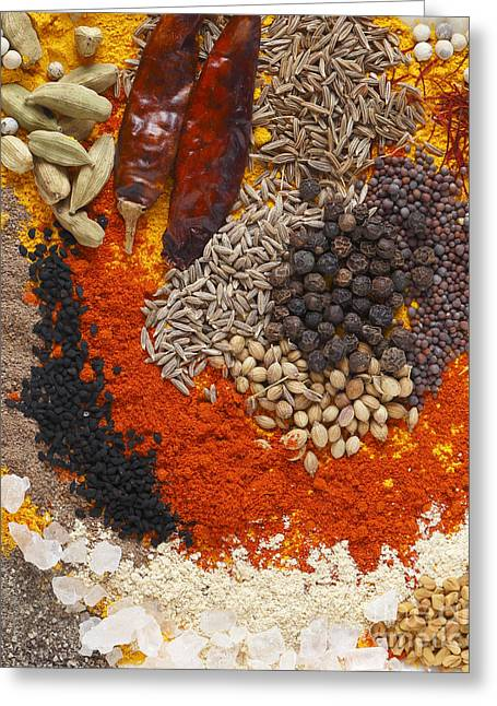 From Seed Greeting Cards - Curry Spices Vertical Greeting Card by Paul Cowan