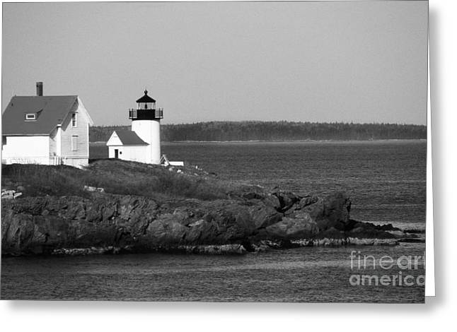 Maine Beach Greeting Cards - Curtis Island Lighthouse In Maine Greeting Card by Skip Willits