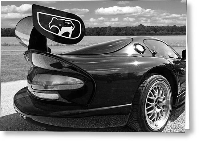 Viper Greeting Cards - Curvalicious Viper Black and White - Square Greeting Card by Gill Billington