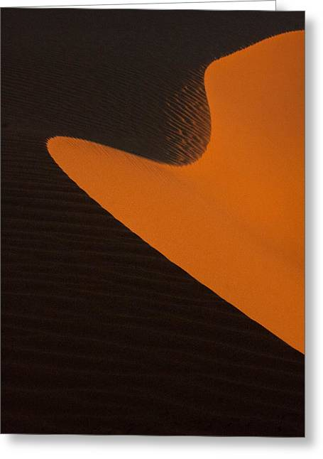 Sand Patterns Greeting Cards - Curves Greeting Card by Phil Dyer