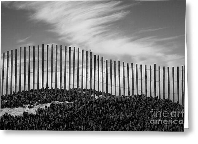 Sand Fences Greeting Cards - Fenceline Greeting Card by Timothy Johnson