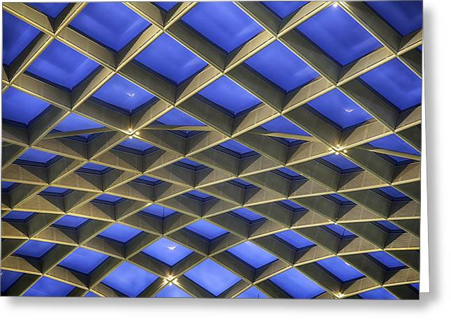 Curvilinear Greeting Cards - Curvilinear Skylight Structure  Greeting Card by Lynn Palmer