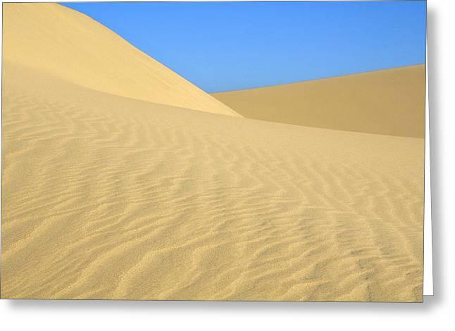 Sand Ripples Greeting Cards - Curving Dunes Greeting Card by Lara Ellis
