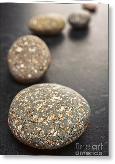 Stepping Stones Greeting Cards - Curving Line of Speckled Grey Pebbles on Dark Background Greeting Card by Colin and Linda McKie