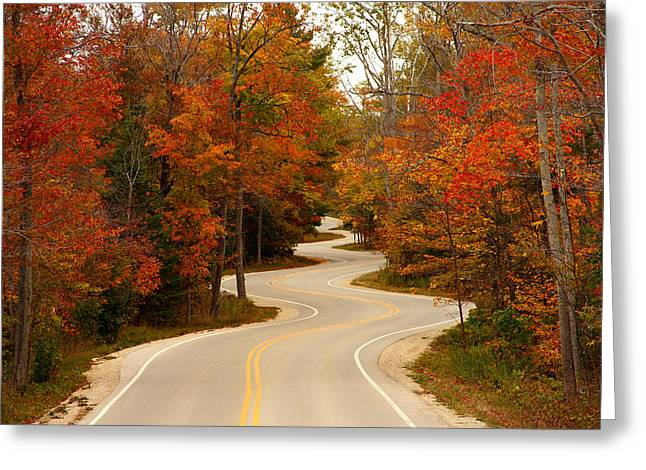 Rural Road Greeting Cards - Curvy Fall Greeting Card by Adam Romanowicz