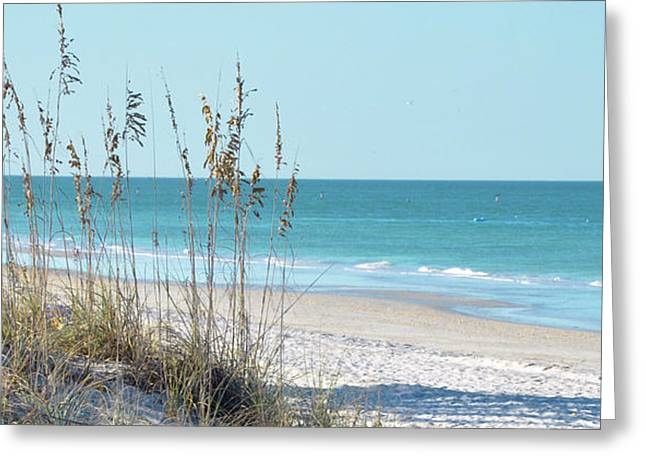 Blue Sky And Sand Greeting Cards - Serene Beach Sea Oats Panoramic Greeting Card by Rebecca Brittain