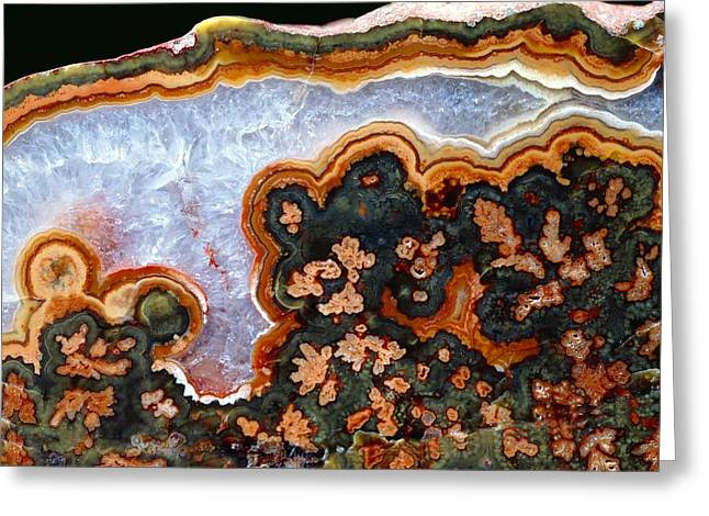 Agate Greeting Cards - Cut and polished agate Greeting Card by Science Photo Library