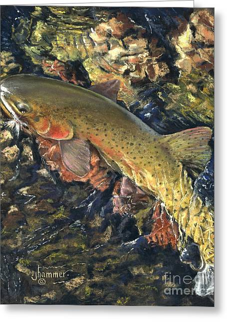 Trout Fishing Pastels Greeting Cards - Cut Throad Trout Greeting Card by Jennifer Hammer