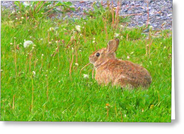 Bunny Greeting Cards - Cute and Fluffy - Digital Painting Effect Greeting Card by Rhonda Barrett