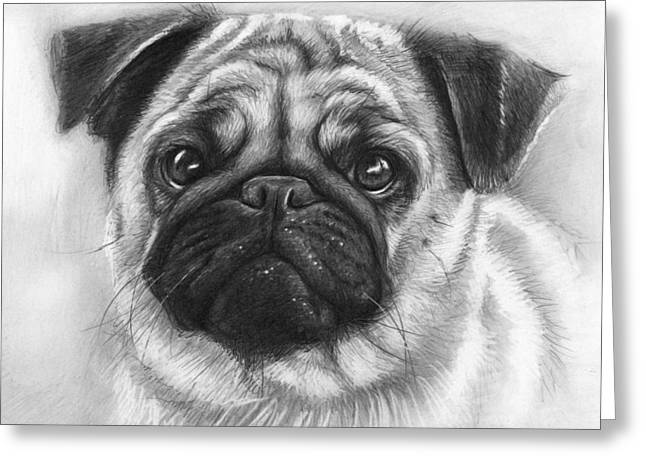 Black Drawings Greeting Cards - Cute Pug Greeting Card by Olga Shvartsur