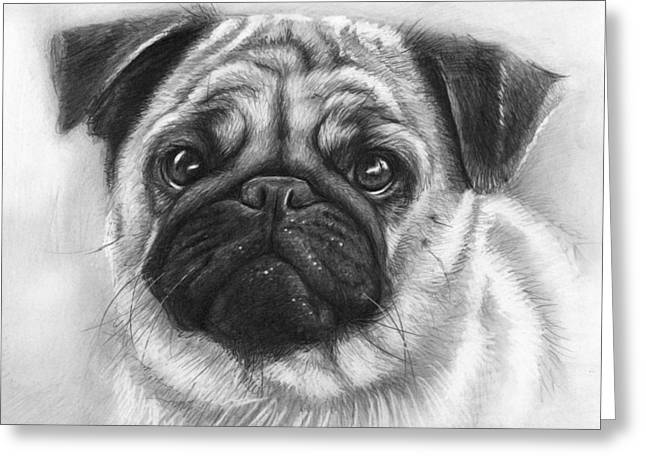 Black And White Drawing Greeting Cards - Cute Pug Greeting Card by Olga Shvartsur