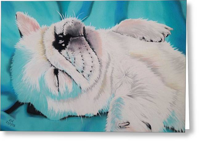 Dreamer Pastels Greeting Cards - Cute Puppy Napping Greeting Card by Kevin Hubbard