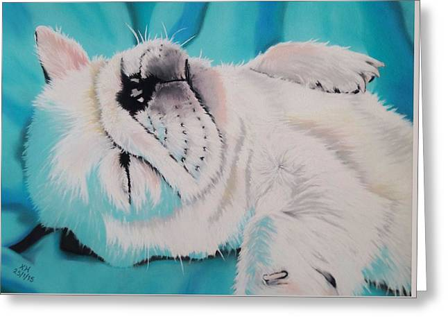 Puppies Pastels Greeting Cards - Cute Puppy Napping Greeting Card by Kevin Hubbard