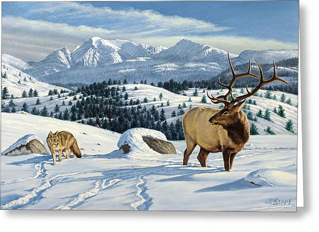 Elk Wildlife Greeting Cards - Cutoff Mountain -  Elk and Coyote   Greeting Card by Paul Krapf
