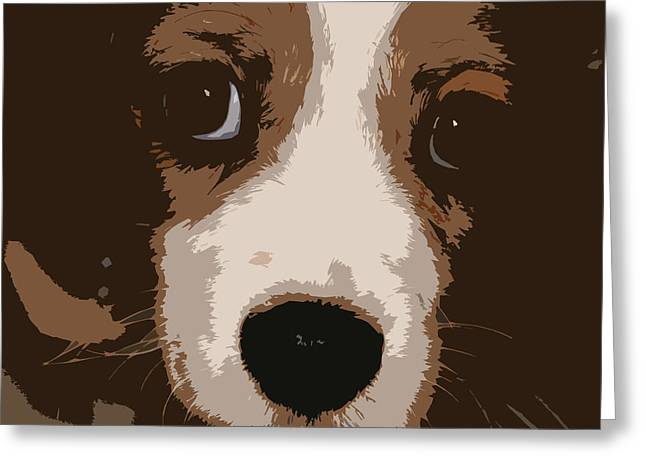 Puppies Photographs Greeting Cards - Cutout - 05 Greeting Card by Do-it-again Photography
