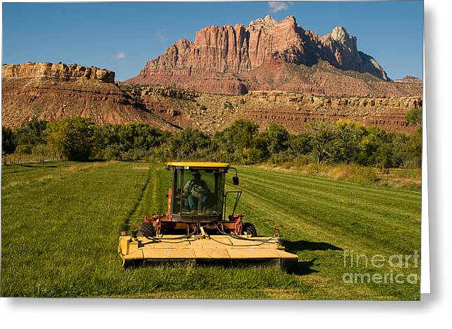 Geobob Greeting Cards - Cutting the Last Hay of the Season Rockville Utah Greeting Card by Robert Ford