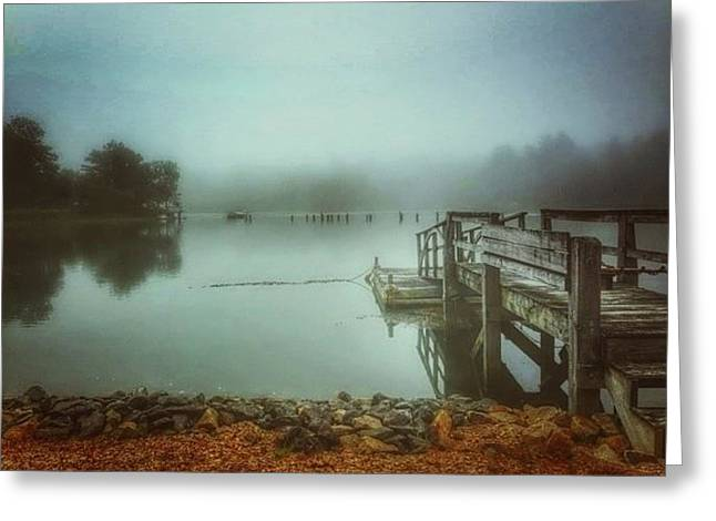 Rural Maine Roads Greeting Cards - Cutts Island Fog Greeting Card by Katherine Antin
