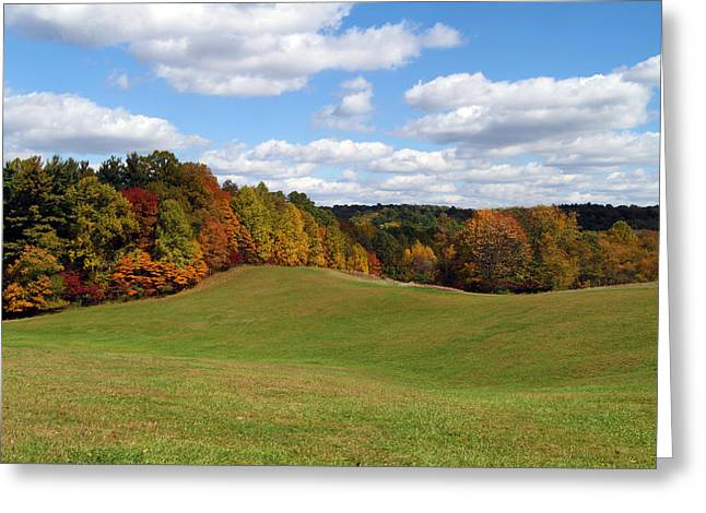 Fall Grass Greeting Cards - Cuyahoga Valley Greeting Card by David Yunker