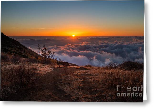 Back Country Greeting Cards - Cuyamaca Bench Sunset Greeting Card by Alexander Kunz