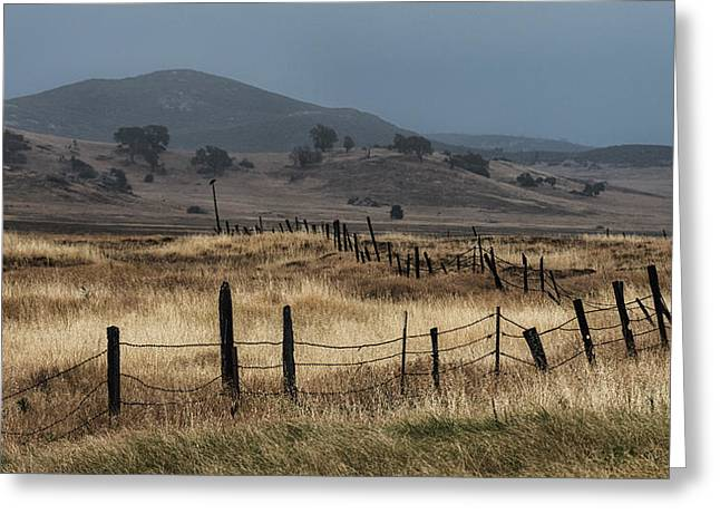 Brown Grass Greeting Cards - Cuyamaca Fenceline Greeting Card by Joseph Smith