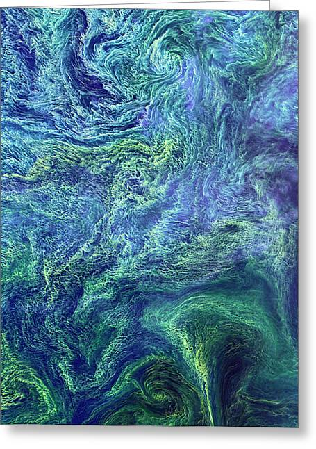 Cyanobacteria Bloom Greeting Card by Nasa
