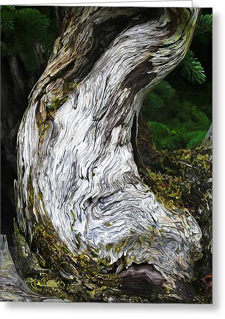 Nature Study Greeting Cards - Cycle of Life Greeting Card by Bill Caldwell -        ABeautifulSky Photography