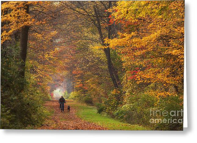Cyclist And Dog Greeting Card by Michele Steffey
