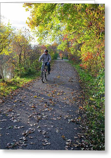 Cyclist In Parkland In Autumn Greeting Card by Jim West