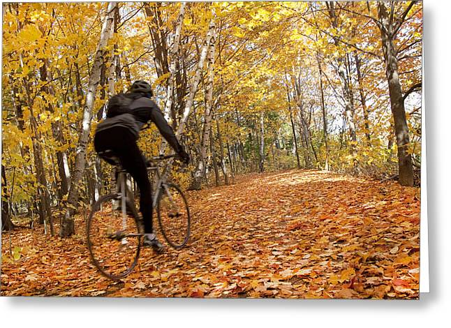 Rearview Greeting Cards - Cyclist Riding In Autumn On Humber Greeting Card by Peter Mintz