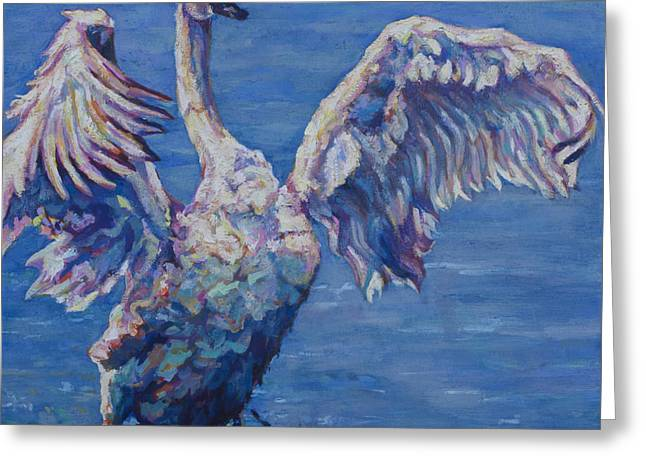 Water Fowl Greeting Cards - Cygnus Greeting Card by Patricia A Griffin