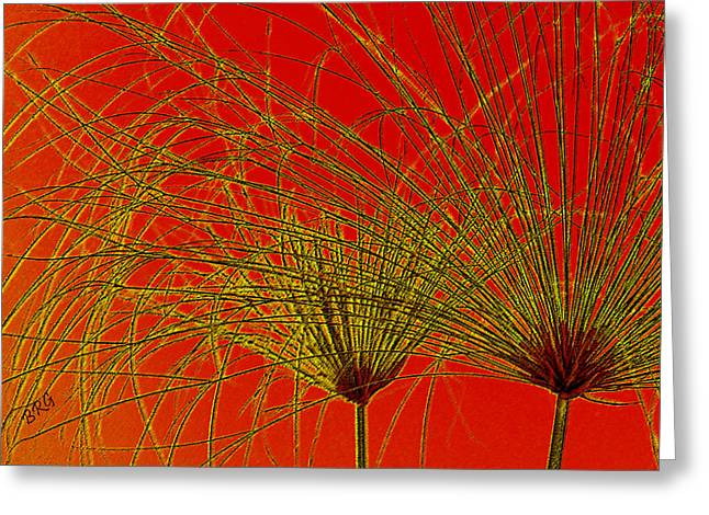 Yellow Line Digital Art Greeting Cards - Cyperus Papyrus Abstract Greeting Card by Ben and Raisa Gertsberg