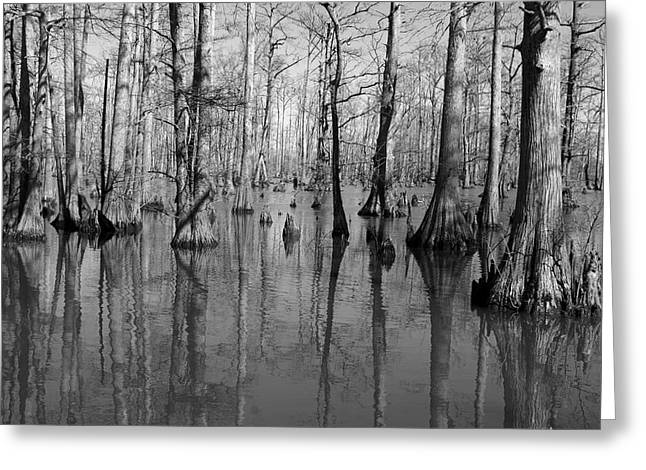 Southern Illinois Greeting Cards - Forgotten - black and white art print Greeting Card by Jane Eleanor Nicholas
