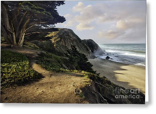 Hwy 1 Greeting Cards - Cypress Beach Greeting Card by Sharon Foster
