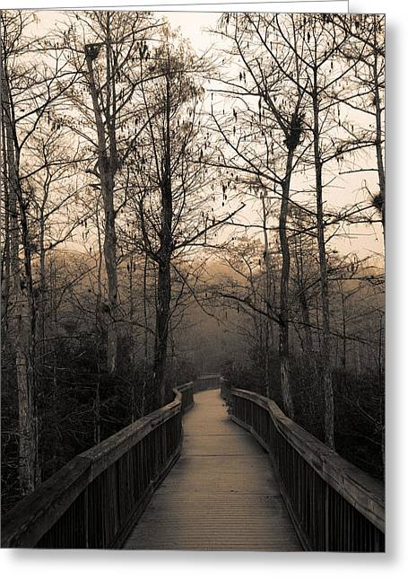 Cypress Swamp Greeting Cards - Cypress Boardwalk Greeting Card by Gary Dean Mercer Clark